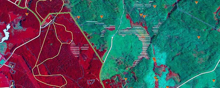 Karta Over Skogsbrander I Sverige.Skogsstyrelsen Brandkarta 2014