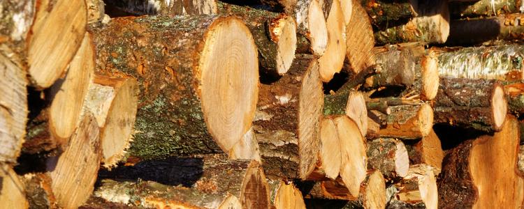 Skogsstyrelsen - Prices on roundwood